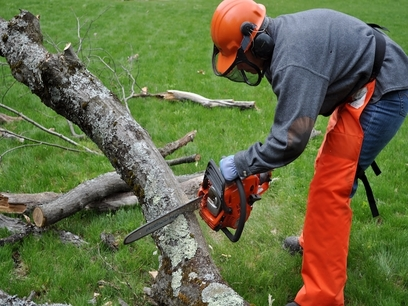 Picture of our employee in safety gear cutting up a old branch from a tree in Waukesha, WI